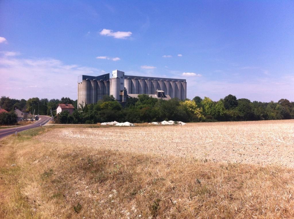 Kathedralen van het graan.