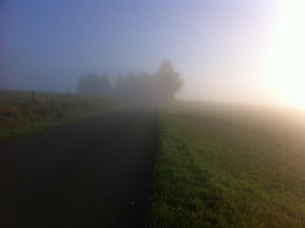 Ochtendnevel in de Ardennen
