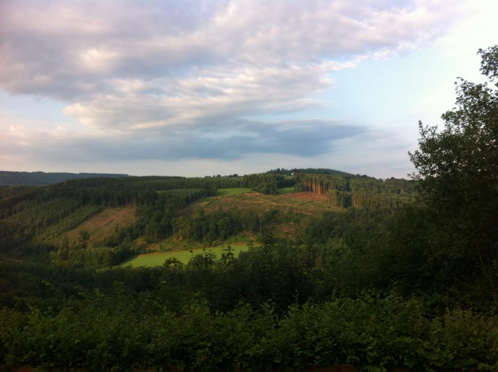 Het groene dal, het stille dal